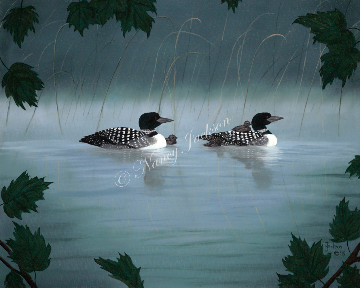 Loons Through the Maples